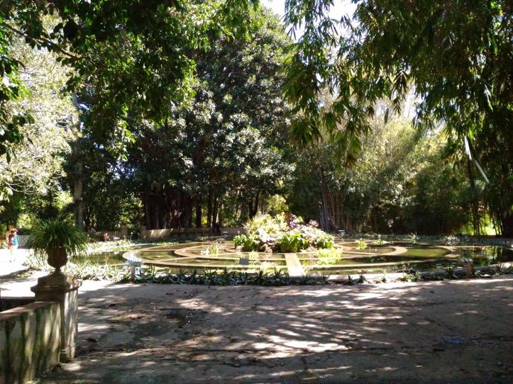 Foto Orto Botanico